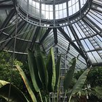 Photo of Botanical Garden (Hortus Botanicus)