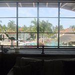 View of pool and area from VIP Lounge