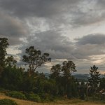 Photo de Bodega Ridge