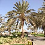 Le Royal Meridien Beach Resort & Spa Photo