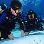 Doctor Dive Costa Maya Foto