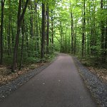 Stowe Recreation Path Foto