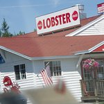 The best lobster on the planet!