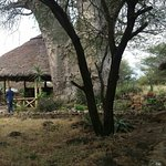 Photo de Ol Mesera Tented Camp