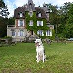 Prachtige omgeving en welopgevoede honden van harte welkom !