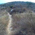 Teilweise geht der Weg auch über Trampfelpfade. Diese kann man aber auch abkürzen.