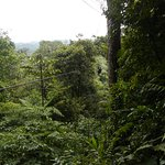 Photo of Costa Rica Sky Adventures - Monteverde Park