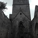 Photo de Muckross Abbey