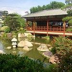 Foto di Exotic Garden (Jardin Exotique)