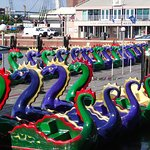 Dragon boats for rental