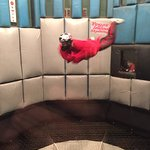 Vegas Indoor Skydiving Foto