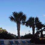Forest Dunes Resort Foto