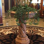 Hotel Splendid Foto