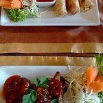 Spring rolls and spare rib starters