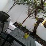 Zdjęcie 1057246