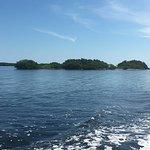 John Pennekamp Coral Reef State Park Foto