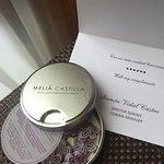 Photo of Melia  Castilla