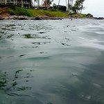 Napili Beach Foto