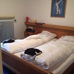 Hotel Birkenhof Foto