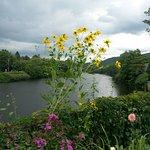 Bridge of Flowers Foto