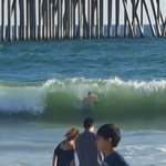 Photo de Huntington Beach State Park