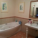 Jacuzzi, separate shower, bigger than most hotel rooms!