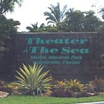 Photo of Theater of the Sea