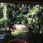 Kebun Indah Foto