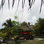 Palmento Grove Cultural & Fishing Lodge Foto