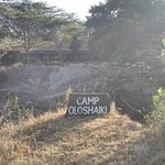 Camp Oloshaiki
