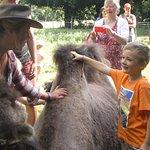 Sarah explique à mon petti fils à quoi servent les bosse du chameaux.