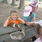 les enfants font connaissances avec les bébés animaux