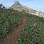 Walking trail on Signal Hill