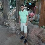 IMG_20160813_230823_large.jpg