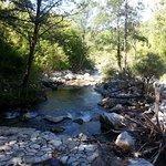 sorgenti fiume Sammaro