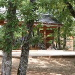 Photo of Ecologites - Le Bois de Faral