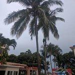Club Tropical Foto