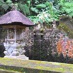 Foto di Mount Kawi