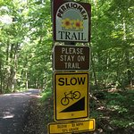 A steep hill on the Perkiomen Trail.