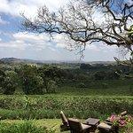 Photo de Gibb's Farm