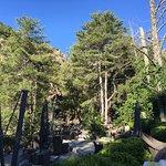 Foto de Hotel Dominique Colonna
