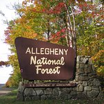 Allegheny National Forest- Entrance Sign-Fall Foliage