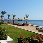 Photo of Beach Albatros Resort