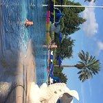 Foto de The Ritz-Carlton Orlando, Grande Lakes