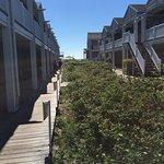 Foto di Ocean Walk Hotel