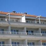 Photo de Hotel Pinia