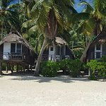 Foto de Paradise Cove Lodges