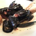 P.e.i mussels appetizer