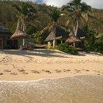 Octopus Resort Foto