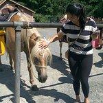 Lulu saying hi to her horse